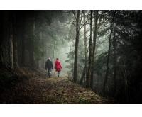 Deutschlands schönste Wanderwege