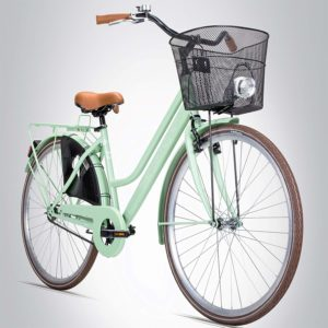 Die aktuell besten Produkte aus einem Hollandrad Test im Überblick