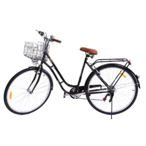 Welche Hollandrad Modelle gibt es in einem Testvergleich?