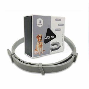 Ein Goglor Flohhalsband für Haustiere kaufen