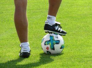 Beste Bundesliga Tipps und Vorhersage im Test